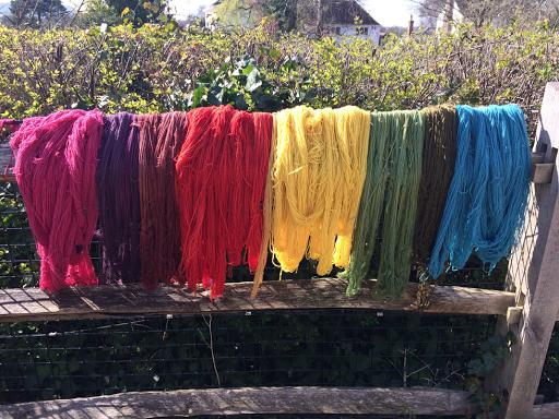 hanks of coloured wool
